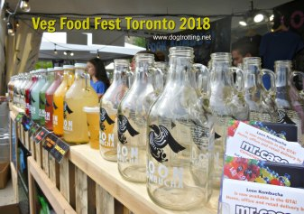 kombucha stand at veg food fest toronto 2018