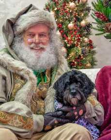 dog with santa www.dogtrotting.net