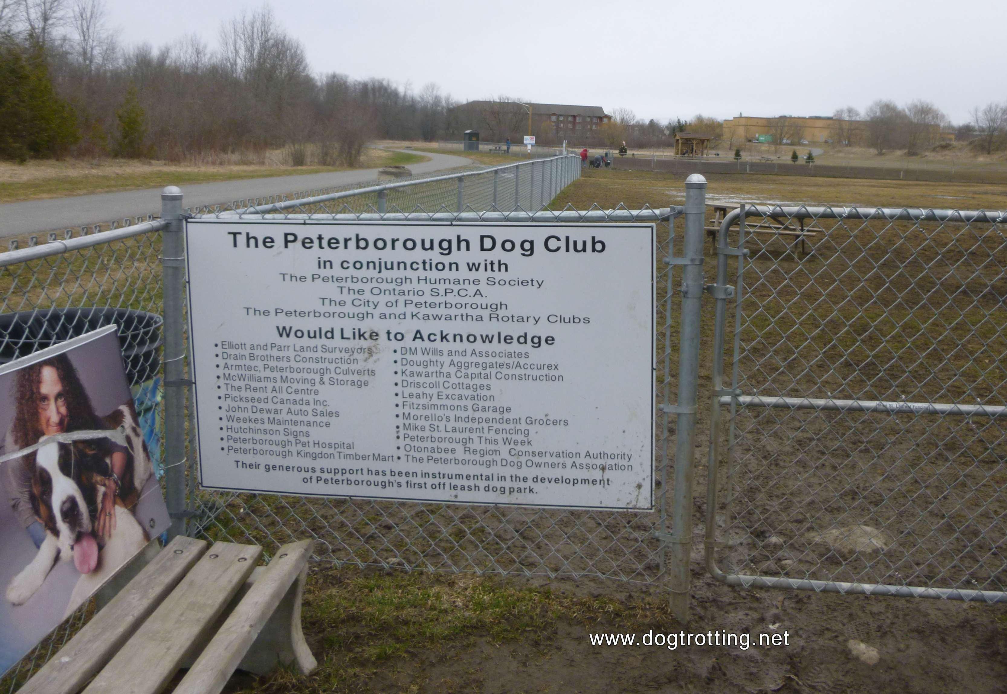 Leash free dog park in Peterborough, Ontario