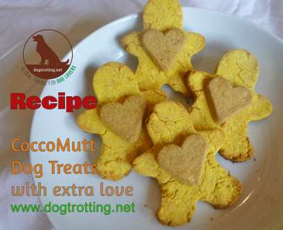 dog treats shaped like gingerbread men recipe