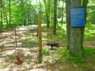 leash-free dog exercise area at Chutes Provincial Park, Ontario