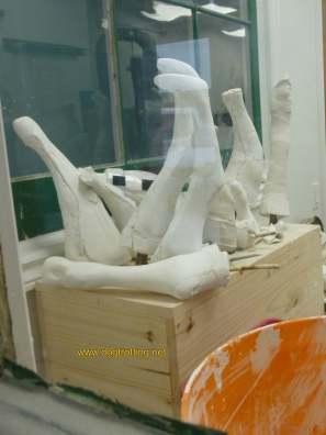 dog leg molds for braces at PawsAbility
