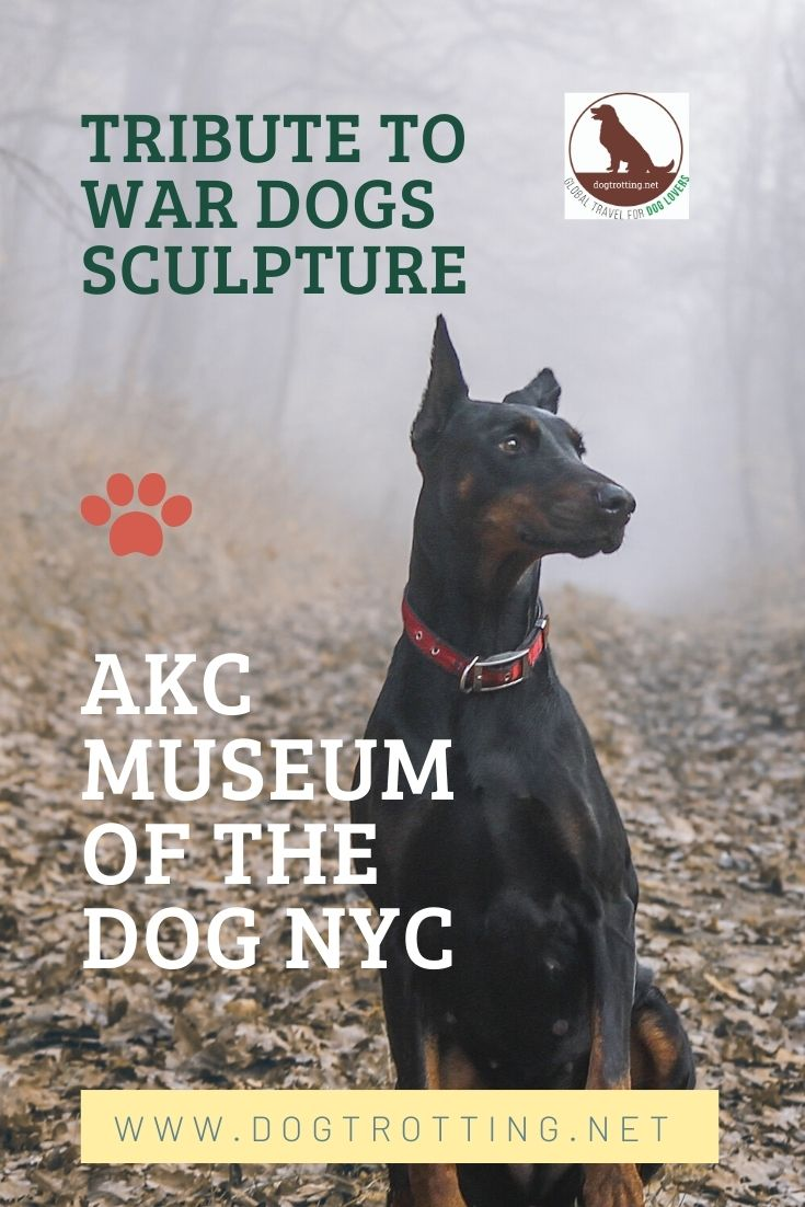 Doberman dog in the forest and text: Tribute to War Dogs Sculpture AKC Museum