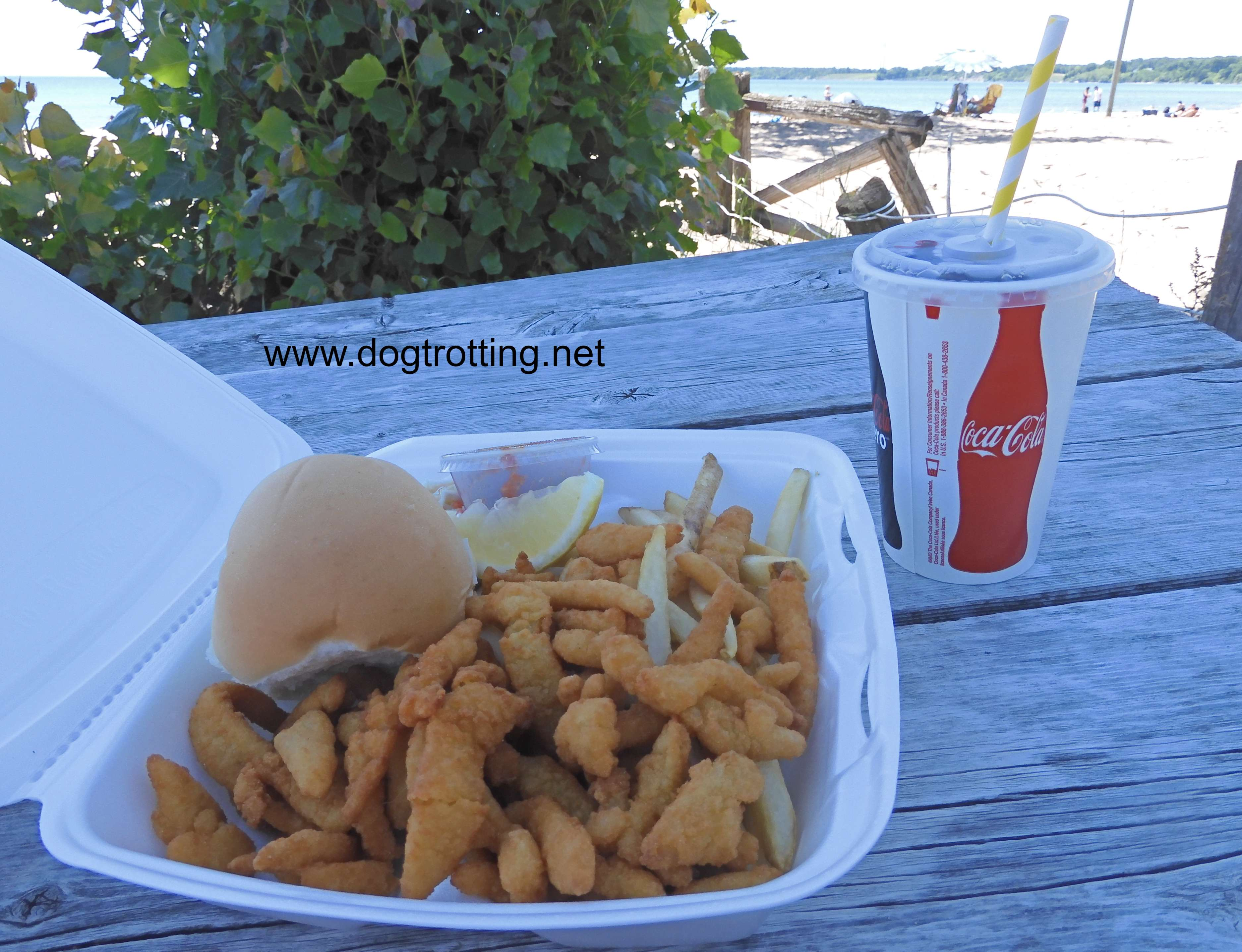 Clam strips and fries in plastic container on table at beach in Port Dover, Ontario, Canada