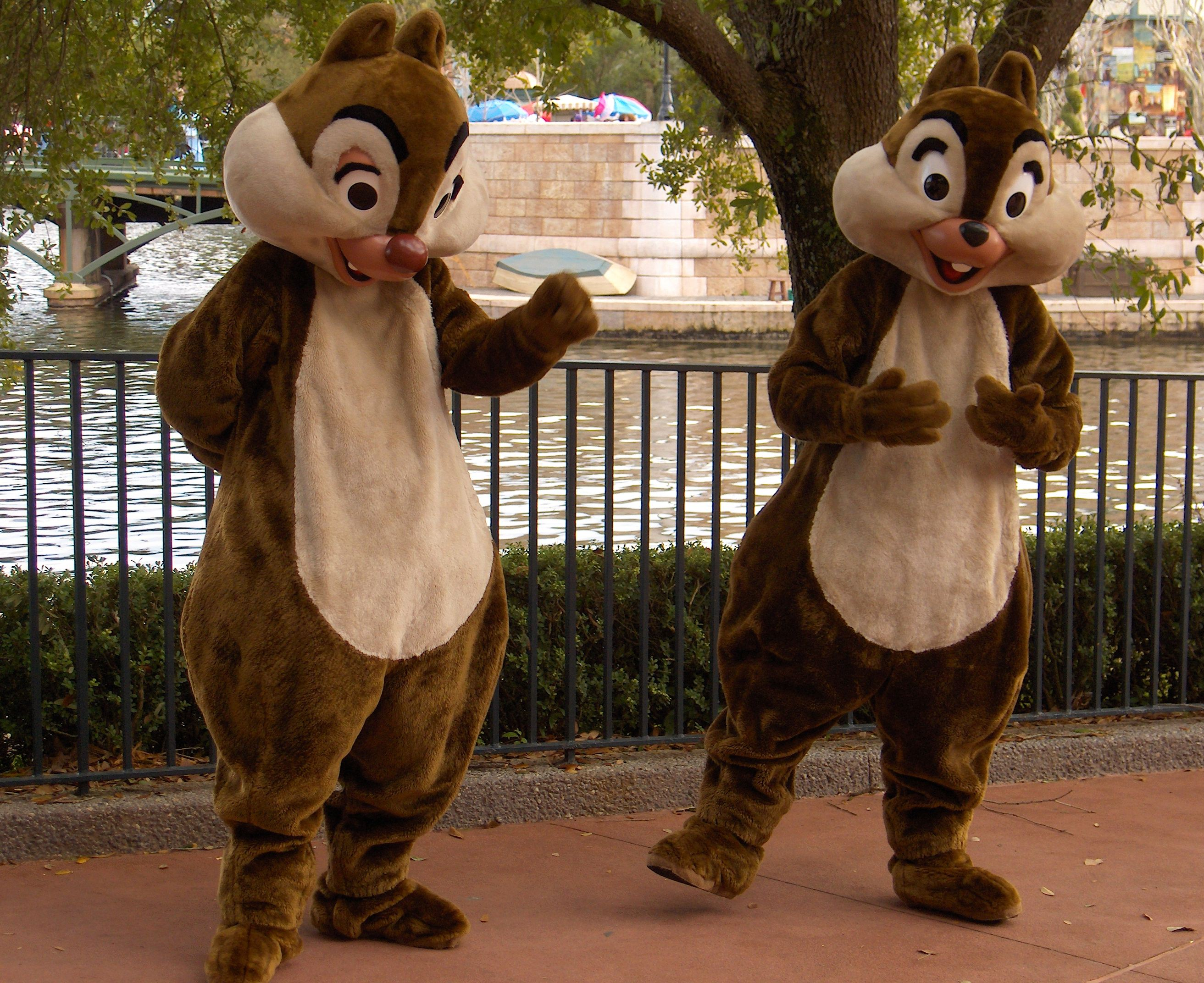costumed chip and dale chipmunks - Dog friendly Kissimmee Florida