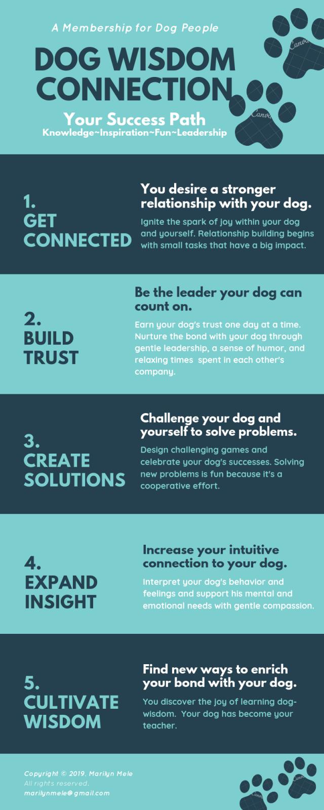 dog wisdom connection