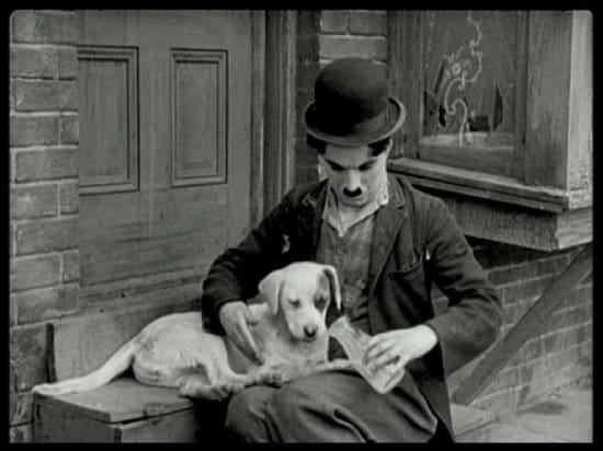 charlie chaplin - a dog's life movie poster, charlie chaplin - a dog's life movie review