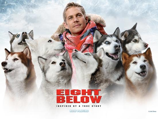 eight below movie poster, Eight Below true story Huskie
