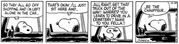 snoopy driver