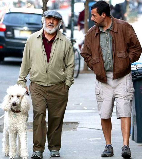 dog Meyerowitz Stories