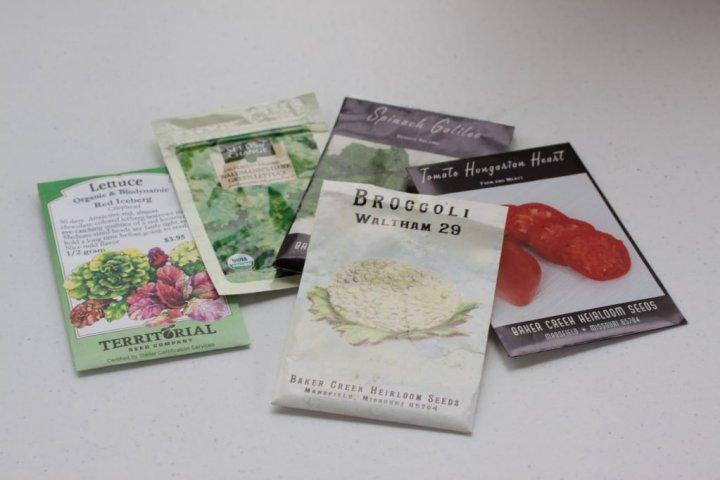 Heirloom Organic Seeds
