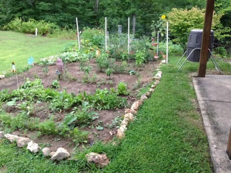 Transition to No-Till Gardening