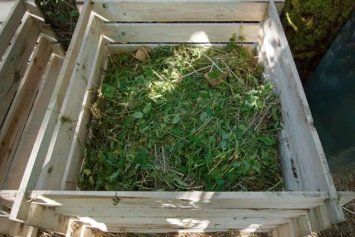 Natural garden living with compost
