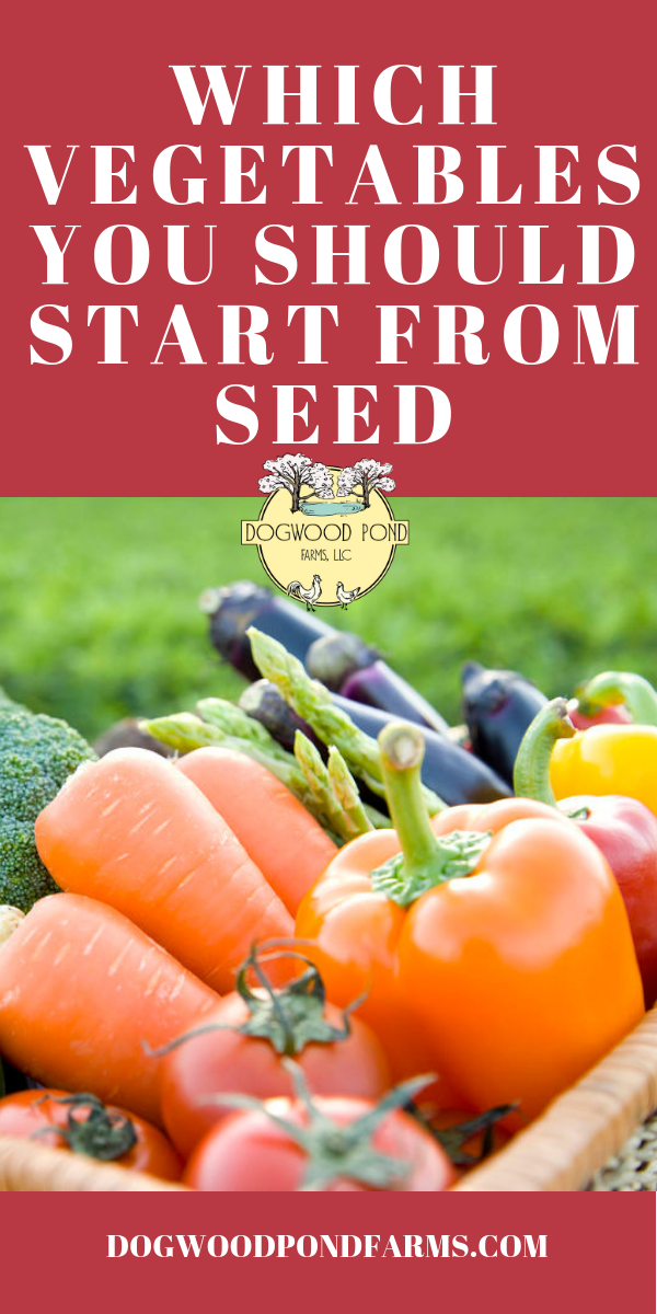 Vegetables to start from seed