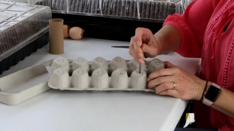 Easy to make egg carton seed starting containers