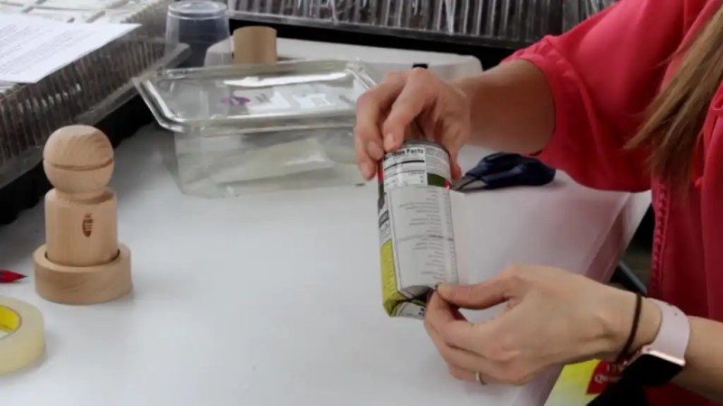 Seed starting in newspaper pots