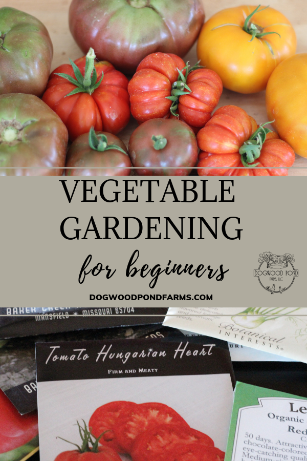 easy vegetable gardening for beginners