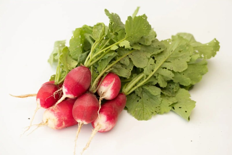 Fermentation is a great way to preserve radishes