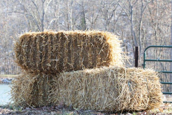 Straw makes a good garden mulch