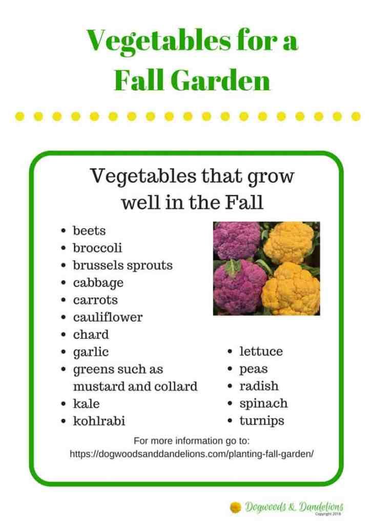 Fall Vegetables printable