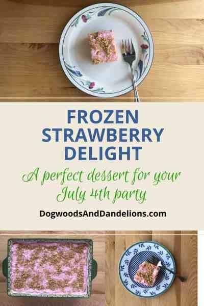 Frozen Strawberry Delight