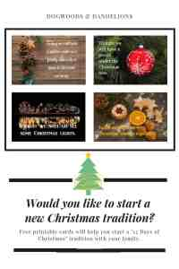 12 Days of Christmas with cards