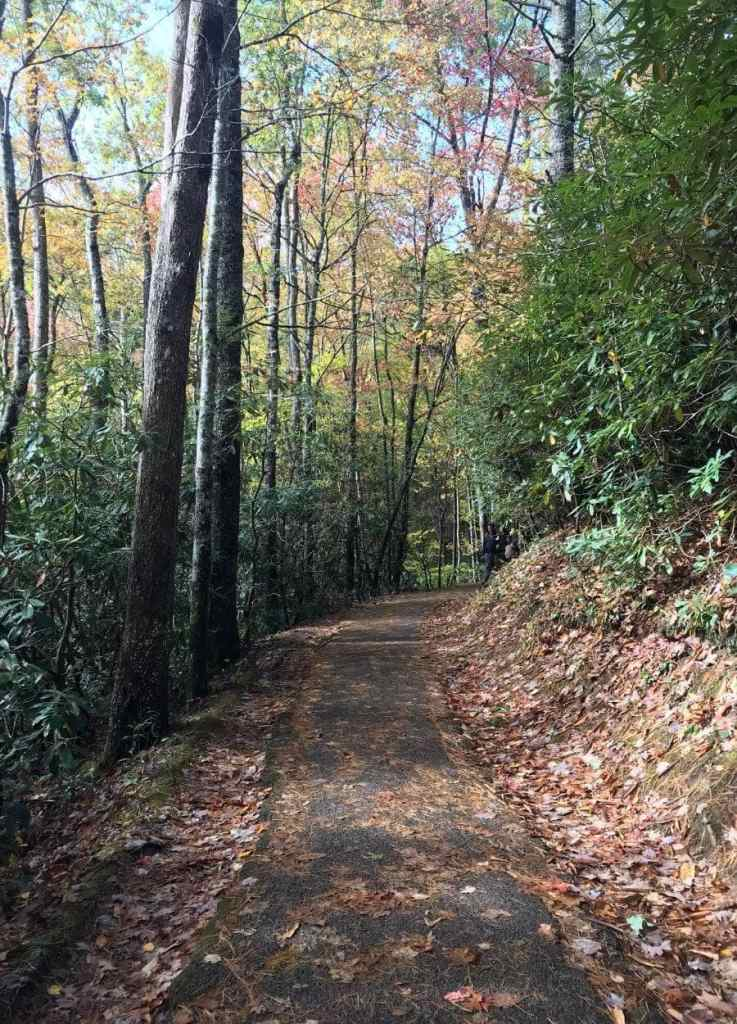 paved laurel falls trail