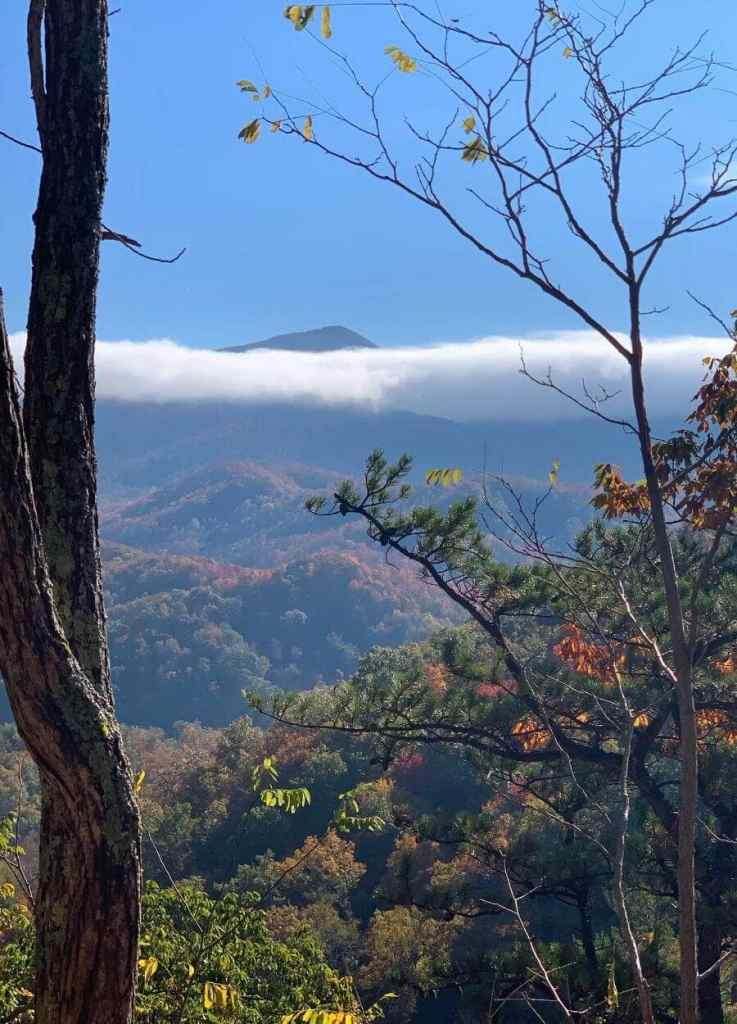 view of mountains from the Laurel Falls Trail in the Great Smoky Mountains National Park, Tennessee