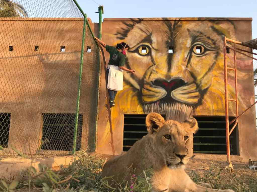 Assil Diab Painting the Khartoum Zoo