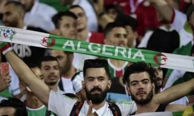 Can 2019,tout , Maghreb Derrière,algérie