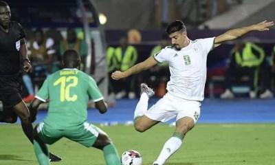 Senegal Algerie Effb49 0@1x