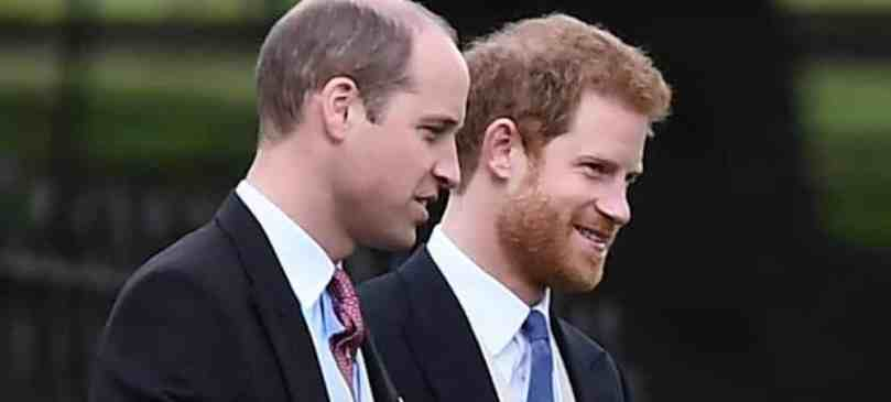 Prince William Et Prince Harry Leur Bel Hommage À Lady Diana Big
