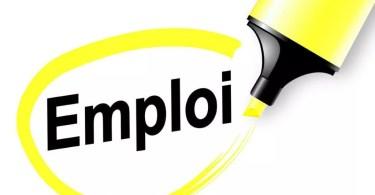 emploi - Solidarités Jeunesses recrute 01  Délégué(e) régional