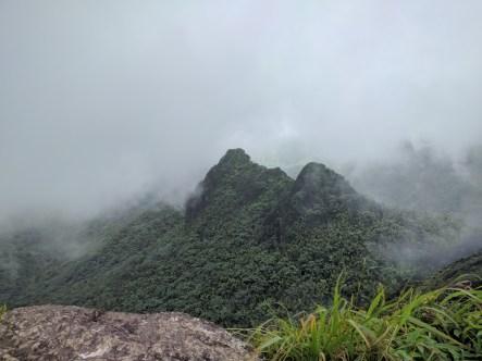 El Yunque 12