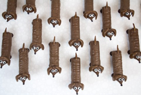 Chocolate-Dogs_8