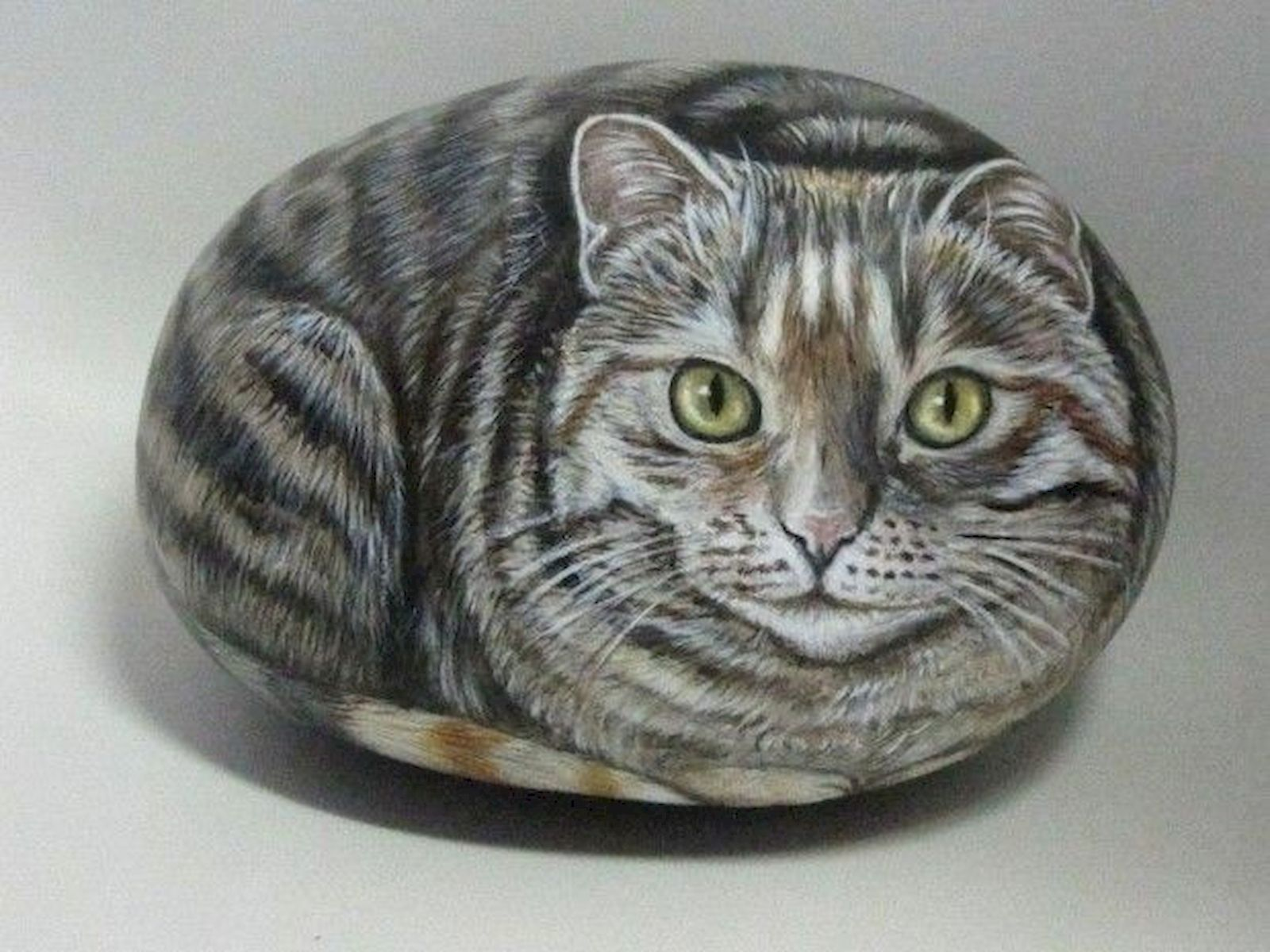 50 Best DIY Painted Rocks Animals Cats For Summer Ideas (3)