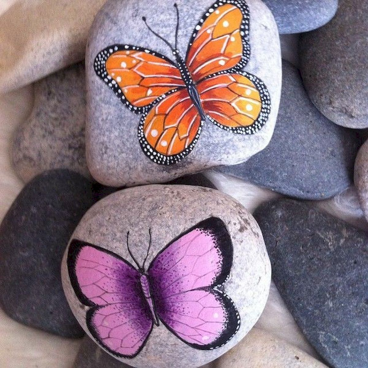 55 Cute DIY Painted Rocks Animals Butterfly Ideas (15)