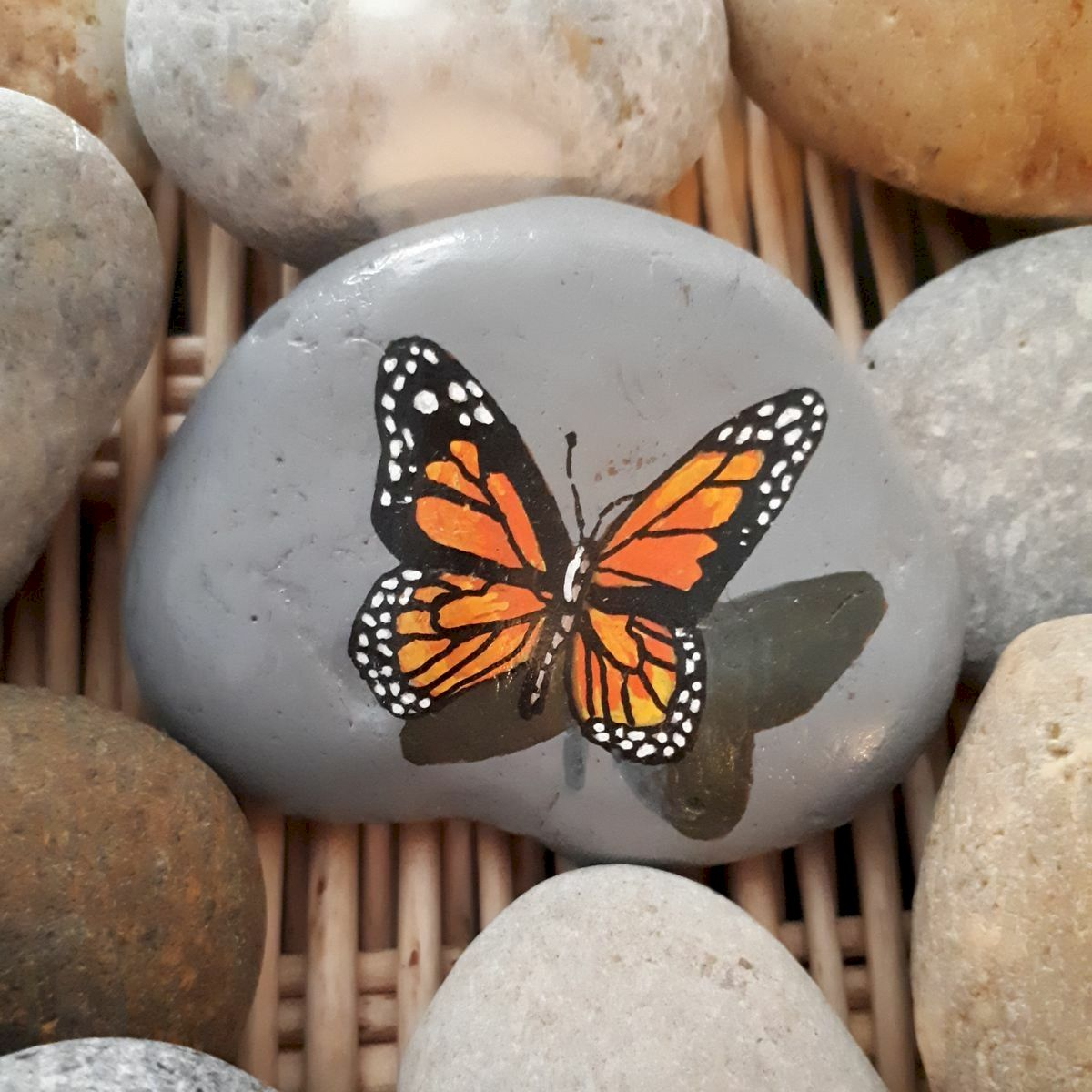 55 Cute DIY Painted Rocks Animals Butterfly Ideas (43)