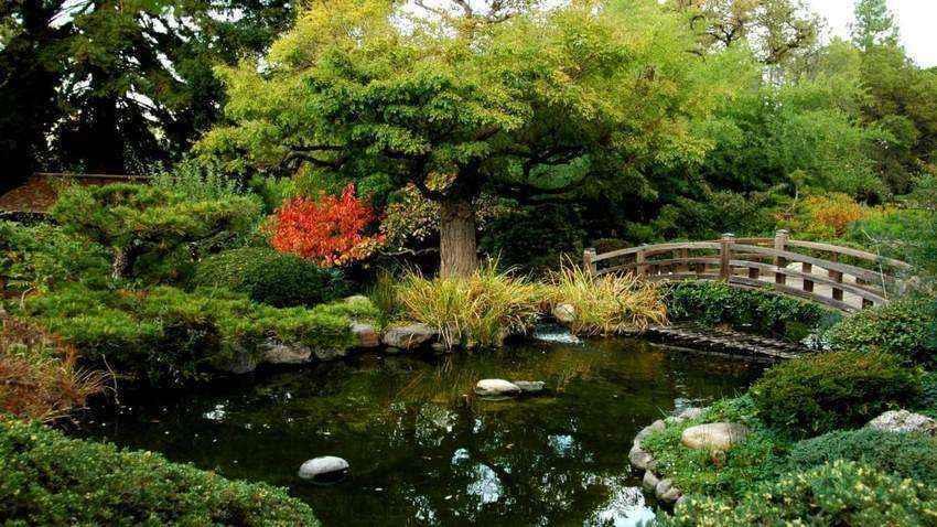 image1-43 | Золотые правила организации японского сада