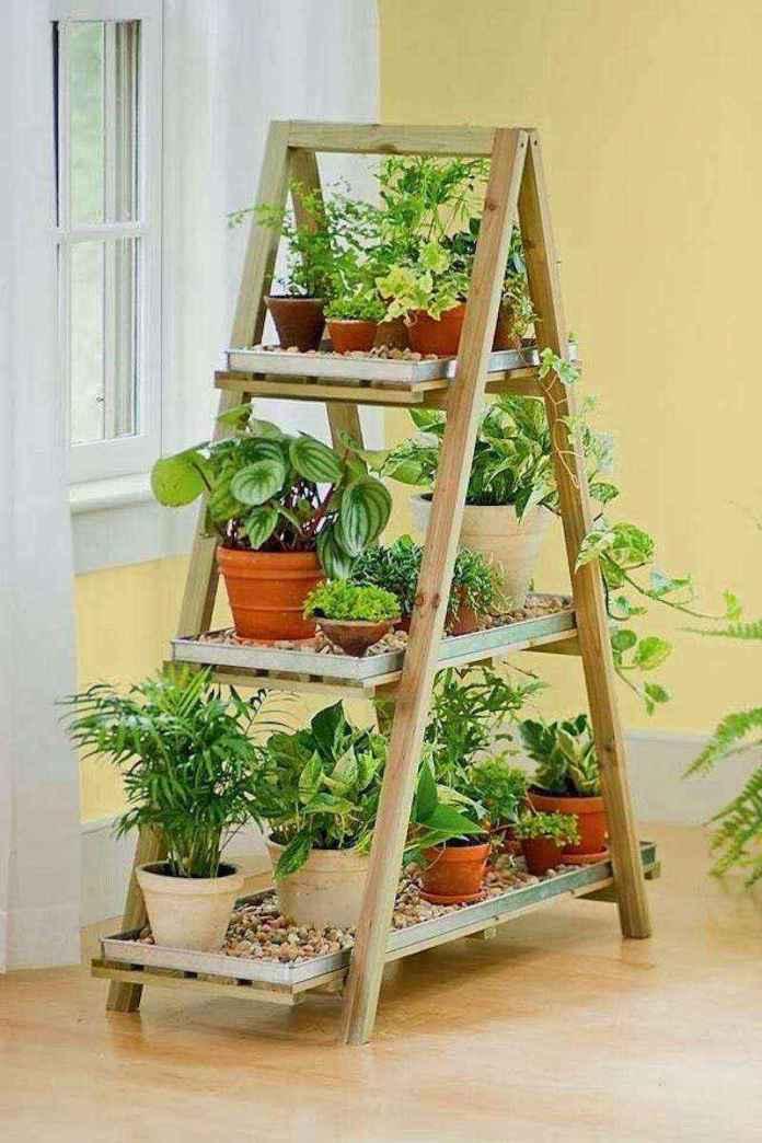 plantas-10   10 великолепных идей для украшения вашего дома растениями которые вам понравятся