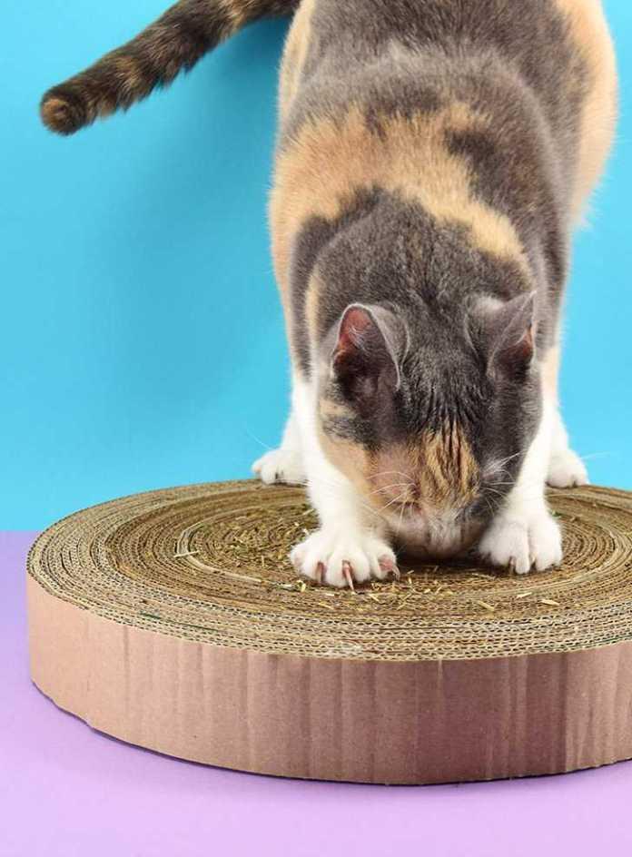 image3-95   Что можно сделать из старых картонных коробок своими руками