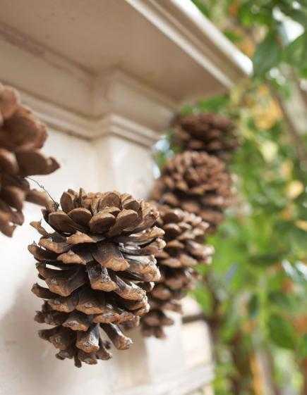 image5-13 | Праздничный декор из шишек своими руками
