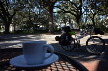 Savannah.. Espresso after the ride. trees. Priceless