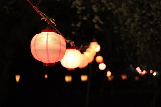 烏帽子山公園千本桜祭りの夜の写真