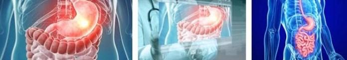 gastroenteroloji hangi hastaliklarla ilgilenir hangi hastaliklara bakar