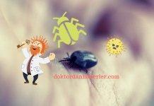 intaniye hangi hastaliklara bakar
