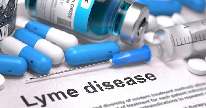 lyme hastaligi tedavisi ve cocuklarda lyme hastaligi