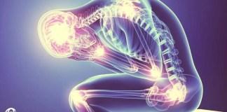 fibromiyalji hangi doktor