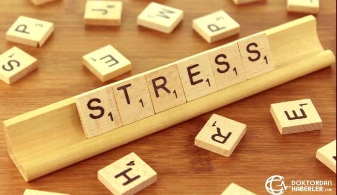 stres neu yuksekligi yapar mi
