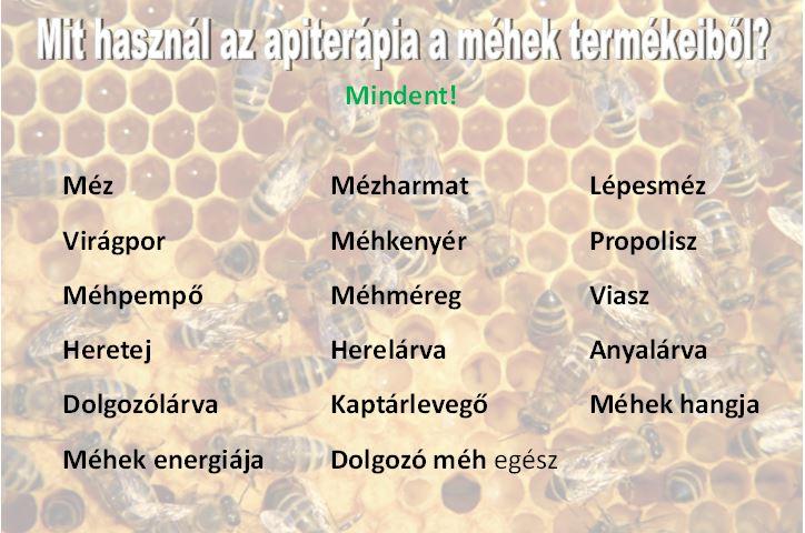 A méhek hasznosítása a gyógyításban – Apiterápia
